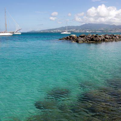 2011[Martinique]